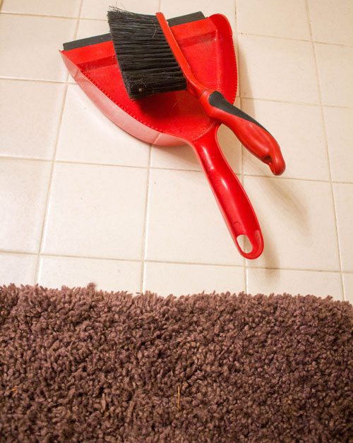 Broom Dust Pan